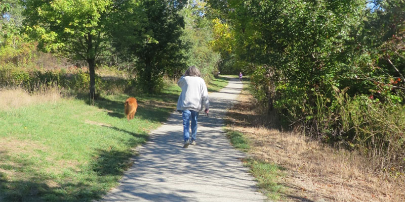 Recreational Trail Grants
